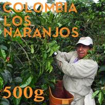 【SPECIALTY COFFEE】500g Colombia Los Naranjos 1.600m Fully Washed / コロンビア ロス・ナランホ フリーウォッシュト