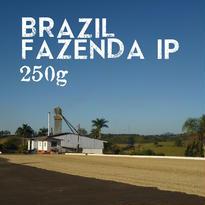 【SPECIALTY COFFEE】250g Brazil Fazenda IP 1.200m Natural / ブラジル ファゼンダIP ナチュラル