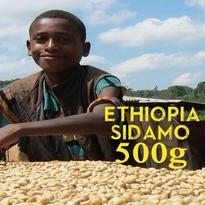 【SPECIALTY COFFEE】500g Ethiopia Sidamo G2 1.850-2.000m Fully Washed / エチオピア シダモ G2 フリーウォッシュト