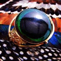 VIntage Brooch 孔雀の瞳