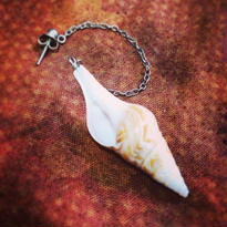 Pierce 巻き貝の耳飾り、小