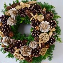 杉とヒバのクリスマスリース 「ブラウンゴールド」