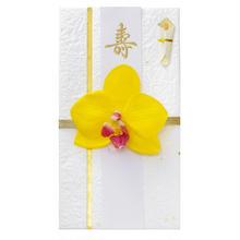 胡蝶蘭のし袋(C)