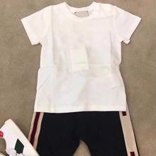 ★コットンTシャツ★