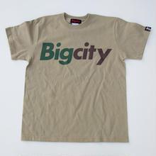 迷彩カラー!!Bigcity LOGO S/STEE