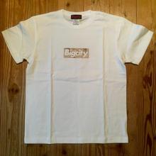 Bigcity BOXロゴ 砂漠迷彩