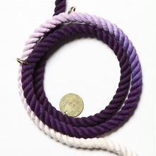 Purple Ombre Rope Leash Adjustable