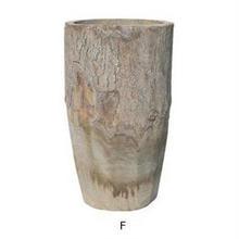 コーデックスに。蔓性の植物やエアープランツのチランジアにも 縦長タイプの天然木を繰り抜いた植木鉢 F