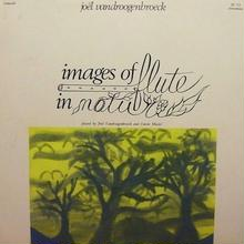 (LP) joel vandroogenbroeck / images of flute lp -USED-