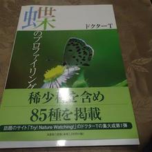 蝶のプロファイリング