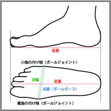 足の測定シート(サイズ確認用)