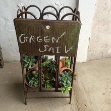 グリーンの小悪魔をつかまえて