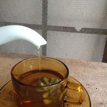 GREEN TEAを愉しむ