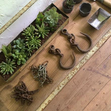 GARDENING  SHOP DISPLAY 3