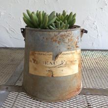 POTTED GARDEN愉しむよ~BROCANTE