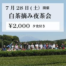 7月28日~29日 満月の白茶摘み夜茶会