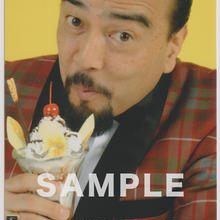 山崎廣明 / マルベル堂プロマイド MP-199