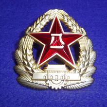 中国人民解放軍07式制帽用帽章