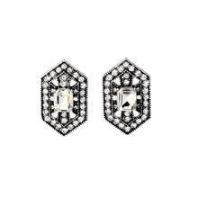 【Jewel shield】ピアス&イヤリング