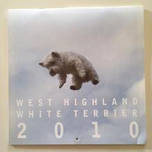 ウェスティ・カレンダー2010