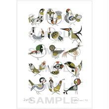 ポストカード鳥の連作No.13 (pl_8090)