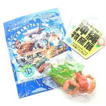沖縄物産展 シークレット/ヤシガニ(ゆで)