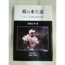 【中古】桜の来た道-ネパールの桜と日本の桜- 染郷正孝 信山社 1711-20SK