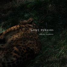 野村佐紀子写真集『hotel pegasus』