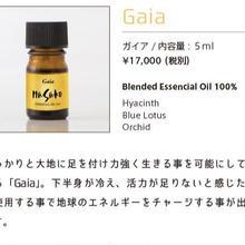 Gaia(ガイア)最強のグラウディング