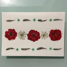メッセージカード 押し花メッセージカードA01(2つ折り/封筒付)