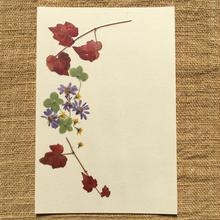 明日香オリジナルポストカードN05 (PostCard)