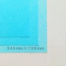 ブルー 14g   545mm × 394mm  400枚