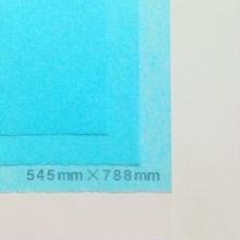 ブルー 14g   272mm × 197mm  800枚
