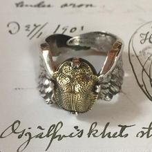 再生の指輪(シルバー✖️真鍮)