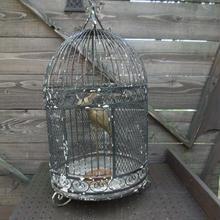 1950年代 メタル製の鳥カゴ