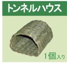 【アウトレット】新米さんが作ったトンネルハウス