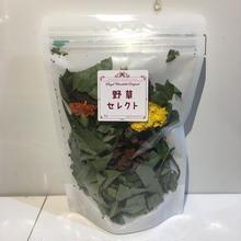 野草セレクト(秋バージョン)