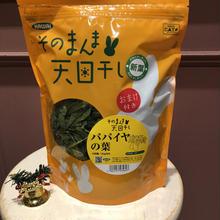 【クリスマス限定品】おまけつきパパイヤの葉