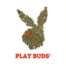 """RUGGED """"PLAY BUDS"""" poster"""