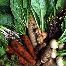 野菜セットL 1回分(ご利用が2回目以降)