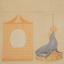 cirque du caprice  seal