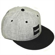 BOX LOGO CAP / GRAY