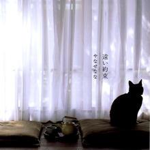 アルバムCD『遠い約束』