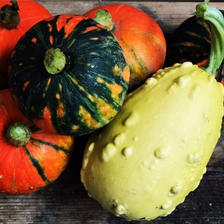 Halloween 装飾用かぼちゃ