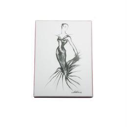 メール便発送商品/ Metropolitan Museum Fashion Illustrations/メトロポリタンミュージアム ファッションイラストレーションズ カードセット