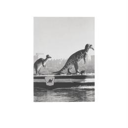 ◆メール便発送商品◆New York Times ダイナソー オン ザ ハドソン 1963 ポケットノートブック