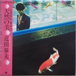 Haruo Chikada – Natural Beauty (近田春夫 – 天然の美)