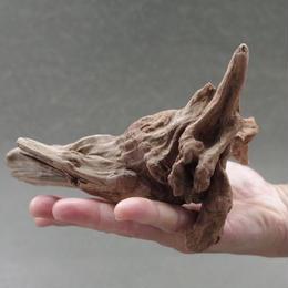 インドネシア産マングローブ流木 08号 Drift woods