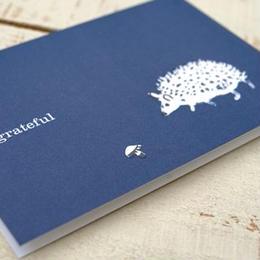グリーティングカード「Little Hedgehog」