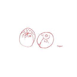 Ume-jaune 完熟梅 100グラム